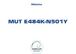 Modulo MUT E484K-N501Y
