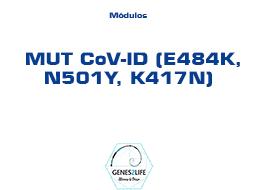 Modulo MUT CoV-ID (E484K, N501Y, K417N)