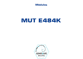 Modulo MUT E484K
