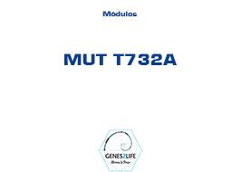 Modulo MUT T732A