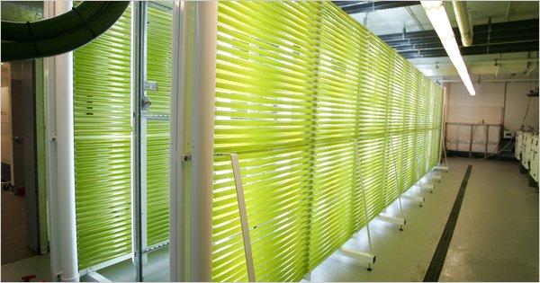 BioFence  Varicon Aqua  Algal photobioreactor design