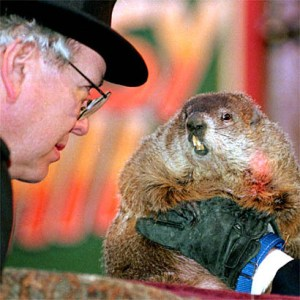 Punxsutawney Phil Jones