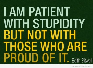Stupidity-quote-inspiration
