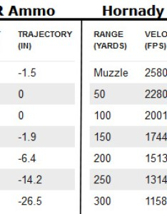 Cci  ammo compared to hornady  max also new hmr ammunition hunt report and review rh varminter