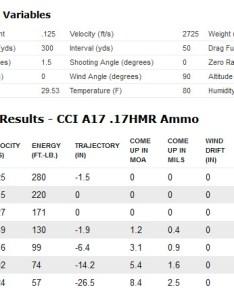 Cci  hmr ammo ballistics also new hmr ammunition hunt report and review rh varminter