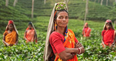 banglades2