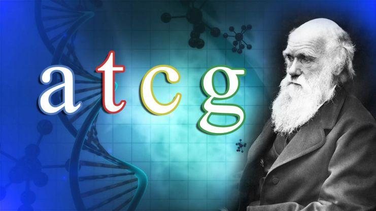 Resultado de imagen de teoria de la evolucion falsa