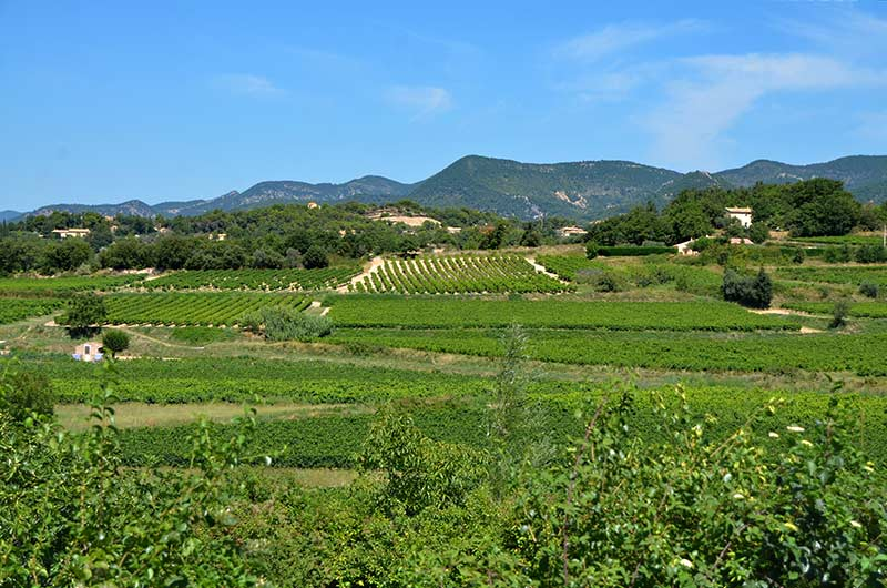 Faucon Village Viticole Au Nord Du Vaucluse