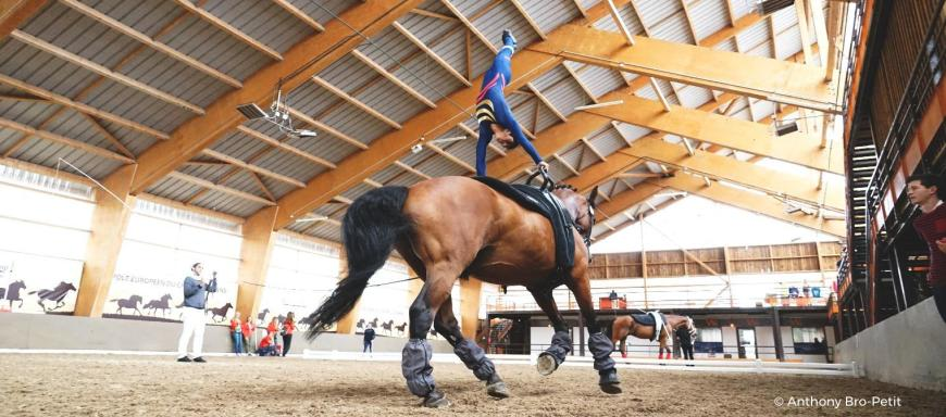 international vaulting competition