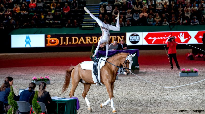 fei top indoors vaulting masters