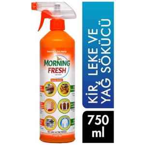 Morning Fresh Leke Ve Yağ Çözücü Power Team 750 Ml