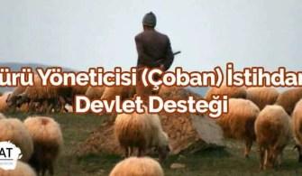 Sürü Yöneticisi (Çoban) İstihdam Devlet Desteği