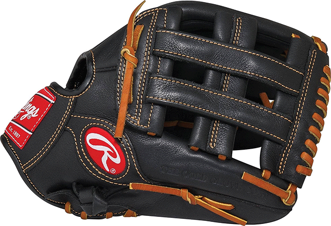 Rawlings pro series gloves