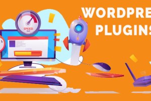 "Top 5 ""must-have"" WordPress Plugins for Web Designers"