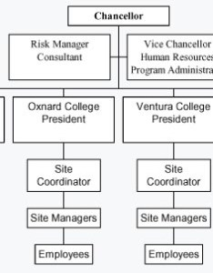 Org chart also canizational ventura county community college district rh vcccd