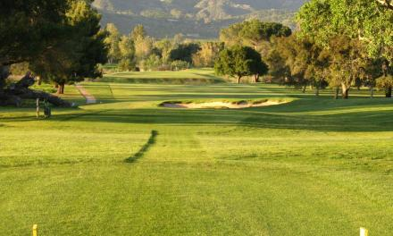 MONEY PITS   The risky game of sustaining municipal golf courses