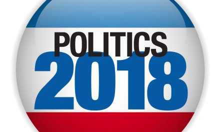 2018 VOTER GUIDE: City Council Elections