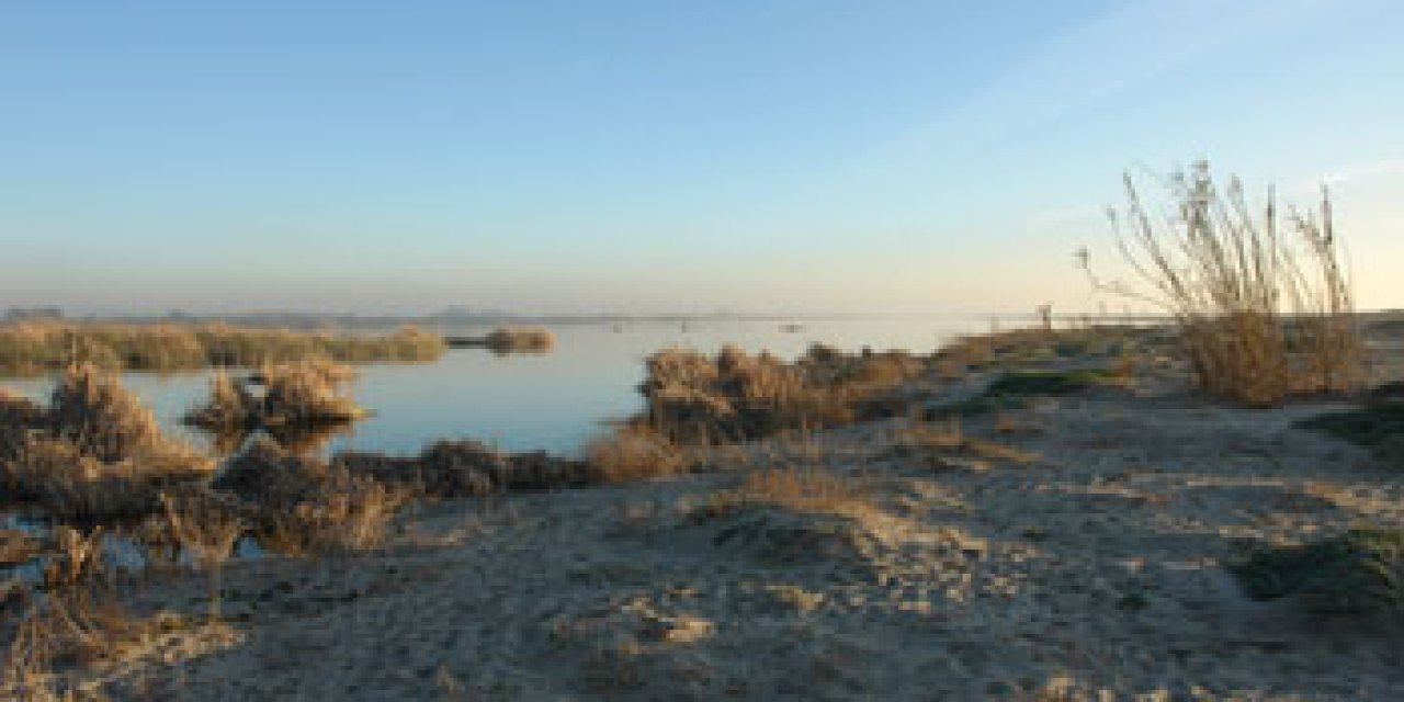 A wish for the Santa Clara River Estuary