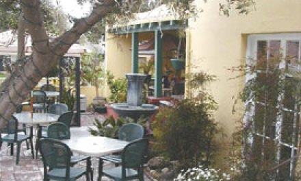 Perfectly pleasant outdoor dining at Cafe Nouveau