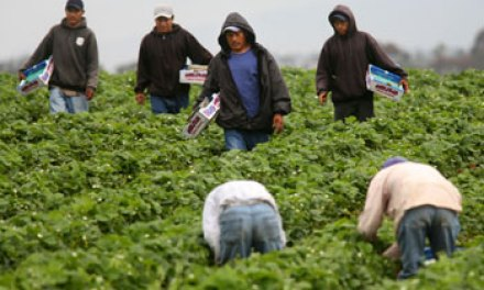 Assembly bill keeps farmworkers' health a priority