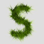 letter S made of real grass
