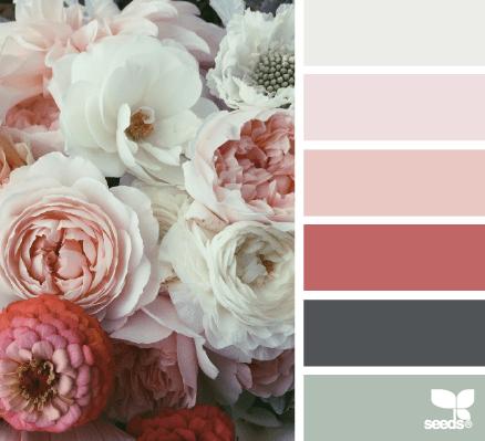 color azalea e lillà