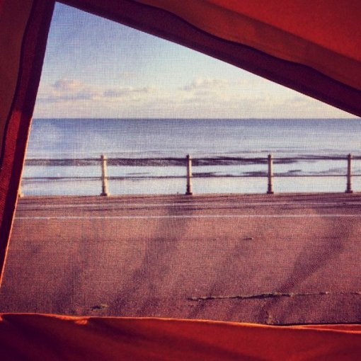A room with a view… Early Bay Westfalia style!