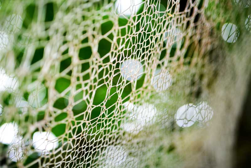 over here – 4m circular web knitted by Shane Waltener
