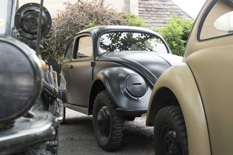 beautiful early beetle tucked hidden away