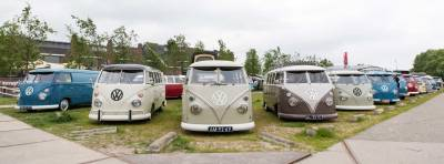 not just Barndoor buses, plenty of other beautiful air-cooled buses to be seen