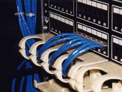 110 Switch To Schematic Wiring Diagram Uncle Ted S Guide To Communications Cabling Termination