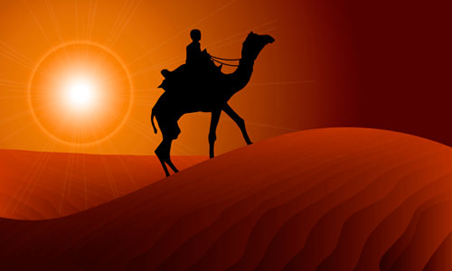 Image result for camel silhouette in the desert