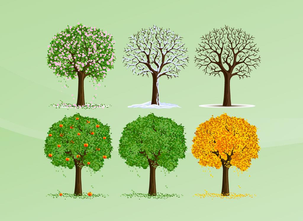 seasons vector trees