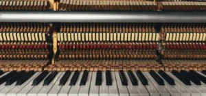 A piano has many components, some of which are hard to find – that's why you shouldn't DIY move it.