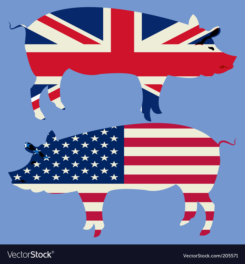 british-and-american-pigs-vector-205571.jpg