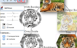 VCarve Desktop Editing Pictures