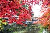 201711_Ibaraki_Tochigi_Gunma_Japan_Travel_By_RentalCar-34