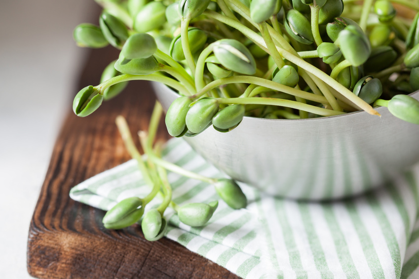 VediamociChiara La dieta macrobiotica  A tavola con lo Yin e lo Yang  VediamociChiara