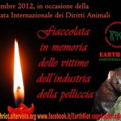 Fiaccolate in tutta Italia per i Diritti degli Animali