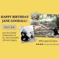 Buon compleanno Jane!