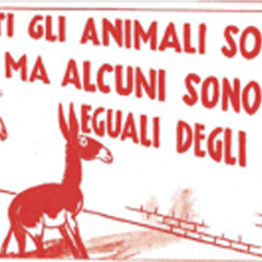 """Altri Animali"": mostra d'arte contemporanea, conferenze e film"