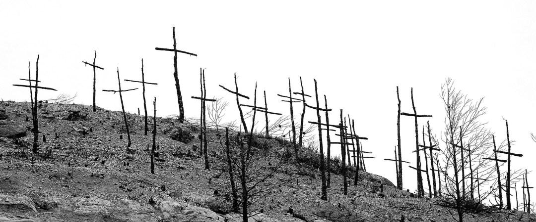 Bosque de cruces en vez de árboles.