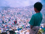 El Despilfarro Alimenticio En El Mundo