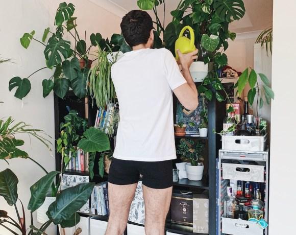 Organic-basics-t-shirt-et-boxer-en-cotton-bio-sous-vetements