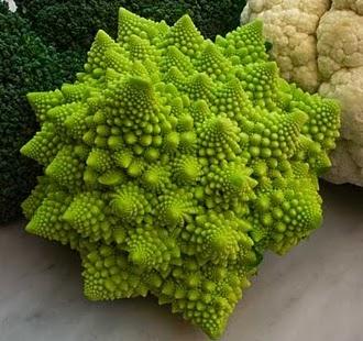 Ricetta Vellutata cavolo verde e porri Primi piatti