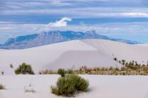 Dune Life Nature Trai