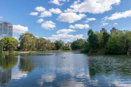 Harlem Meer Lake