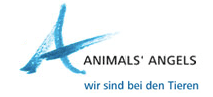 Animals Angels