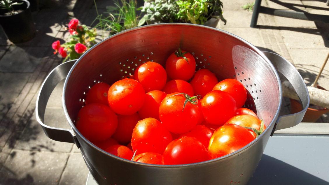 Jouw sambal goreng chutney van tomaat maken