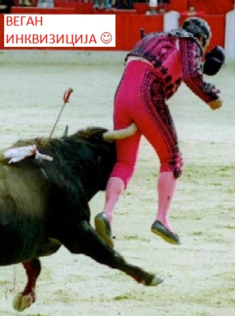 unbelievable-photos-bull-fight-accident-dangerous-12b252892529 - Copy (2)